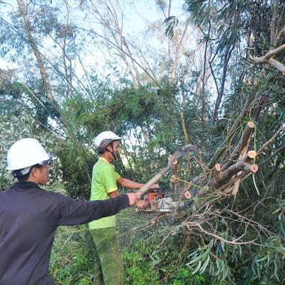 Các địa phương tập trung khắc phục hậu quả bão số 9