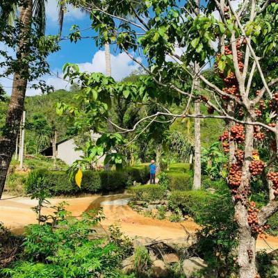 Bình Lãnh: Chọn Cao Ngạn để xây dựng khu dân cư nông thôn mới kiểu mẫu